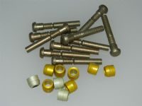 "10 x 1/4"" Pin Rivets Dome Head With Rivnuts Length 1 9/16"" [U5]"
